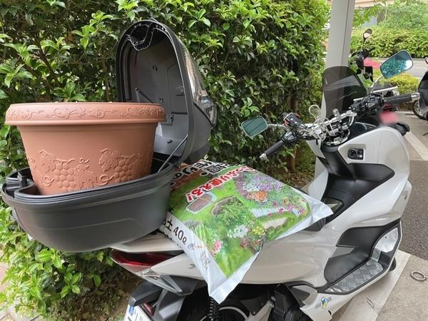 PCX150に植木鉢と土を積む