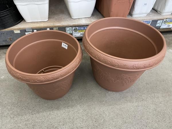 購入した観葉植物の鉢