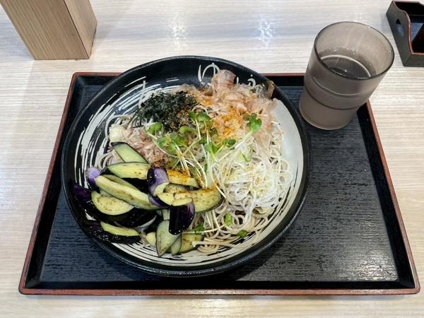 冷し薬味そば(580円)