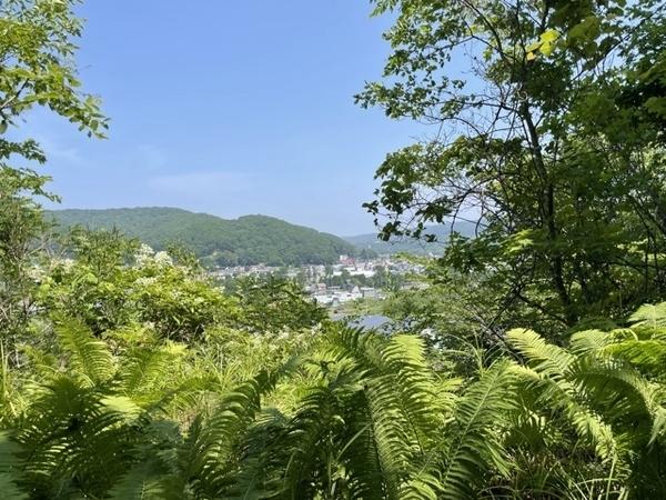 関神社跡から陸別を見下ろす