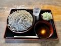 恵み蕎麦【大盛500g】(650円)+ネギ汁変更【温】(100円)