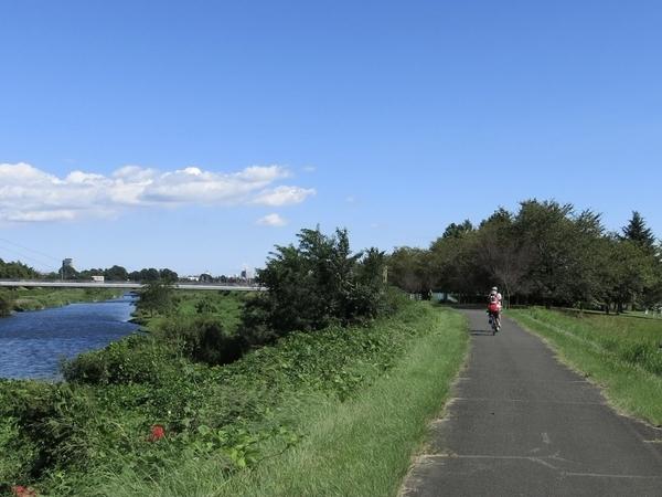 広瀬川自転車道を進む