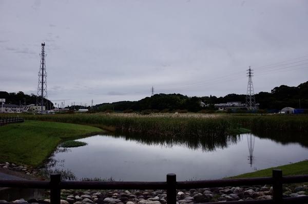 ひょうたん島池(竹袋調整池)