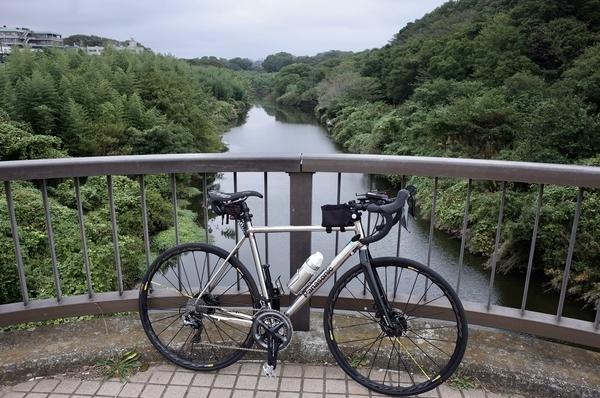 花見川大橋上のパナチタンFRTD03