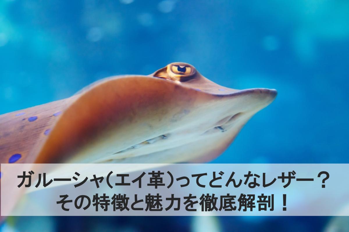 f:id:makoto2250326:20200229144148p:plain