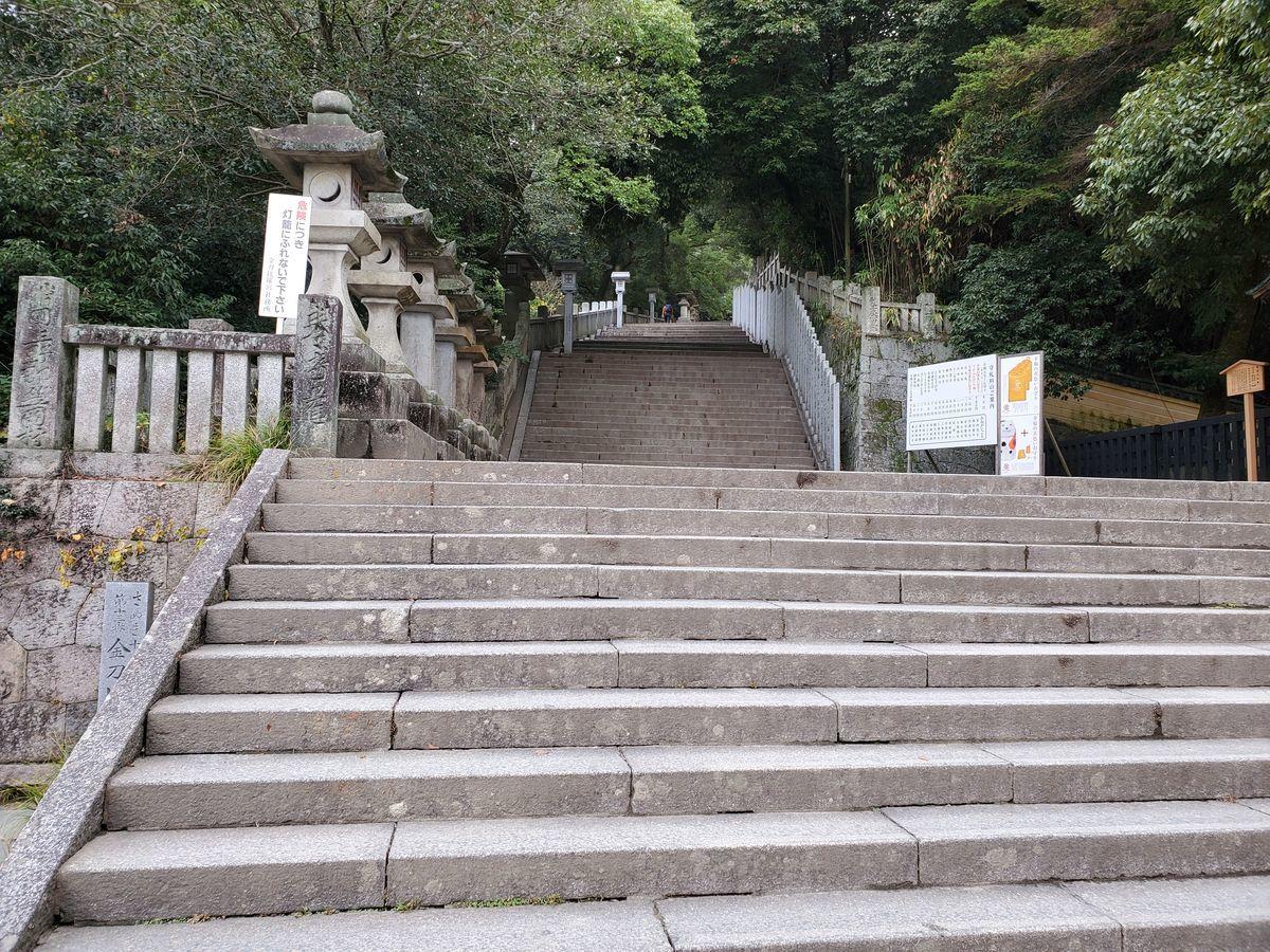 f:id:makoto_endo:20191222210221j:plain
