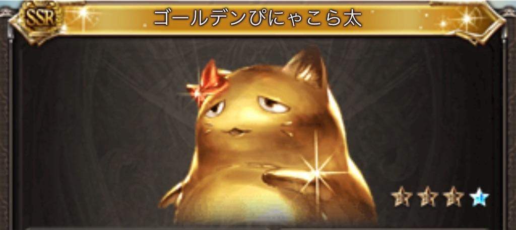f:id:makotsu11921573:20210108184107j:image