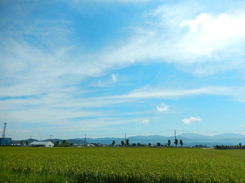 f:id:makuragirui:20170830223406j:plain