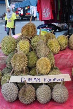 f:id:malaysia_cinta78:20210204171018j:plain