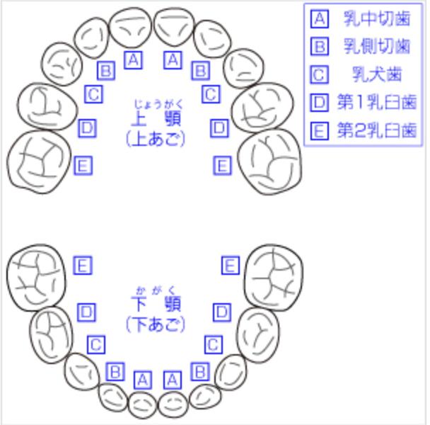 f:id:mama-eiseishi:20171101201058p:plain