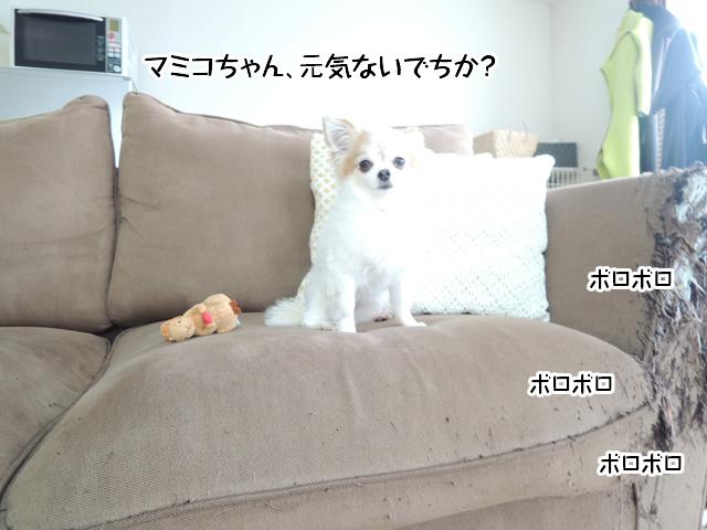 f:id:mama-mamico:20160809182258j:plain