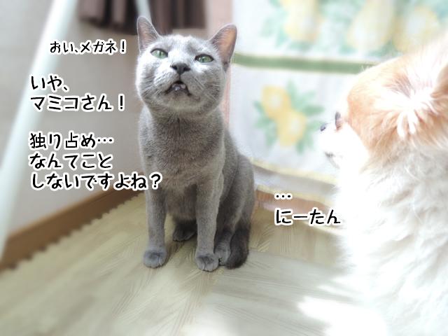 f:id:mama-mamico:20160907163940j:plain