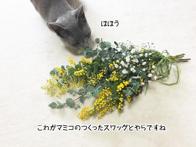 f:id:mama-mamico:20170215175907j:plain