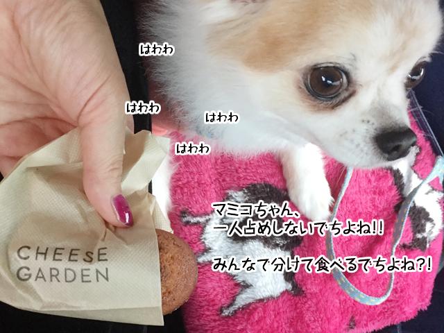 f:id:mama-mamico:20171018180414j:plain