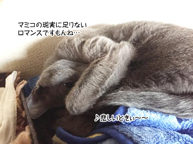 f:id:mama-mamico:20180116125955j:plain