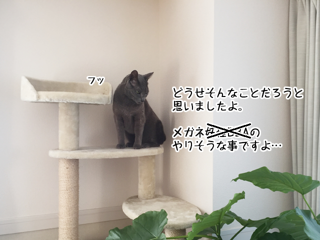 f:id:mama-mamico:20180130132730j:plain