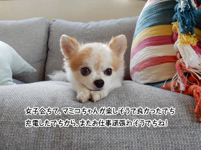 f:id:mama-mamico:20180806133026j:plain