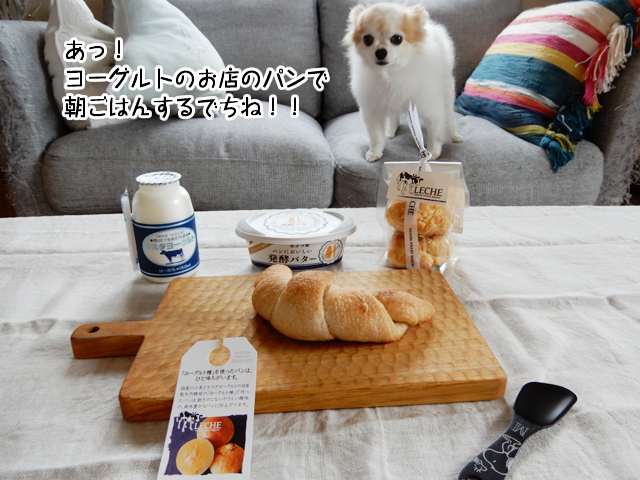 f:id:mama-mamico:20181012125541j:plain