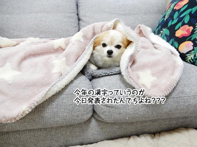f:id:mama-mamico:20181213185951j:plain