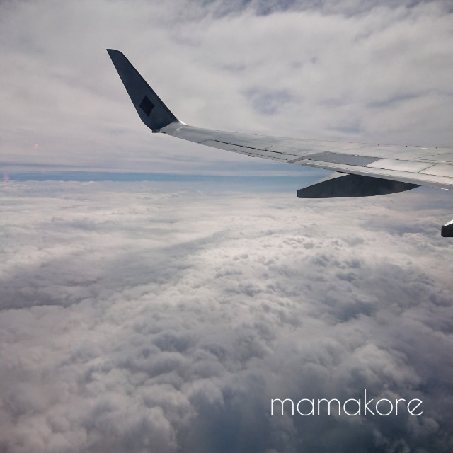 f:id:mamakore:20190507213858j:image