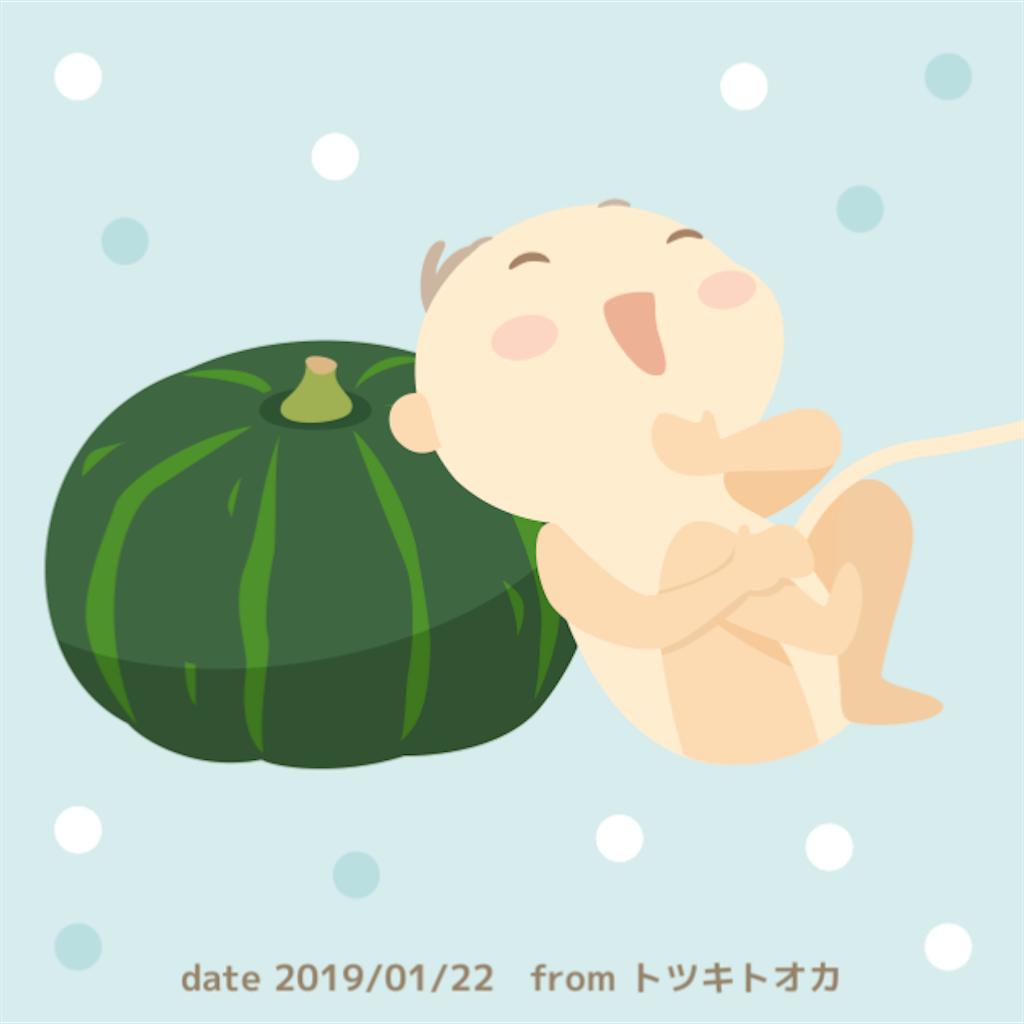 f:id:mamamaako:20190122172452p:image
