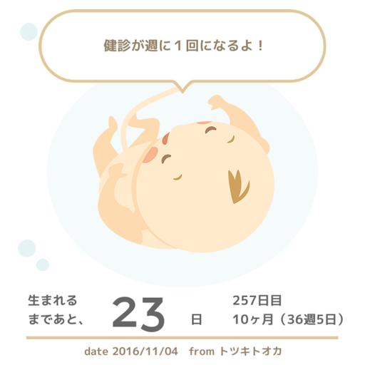 f:id:mamashizue:20161105141825p:image