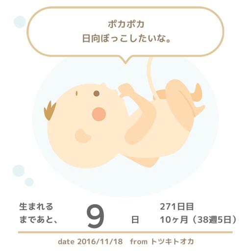f:id:mamashizue:20161118091419p:image