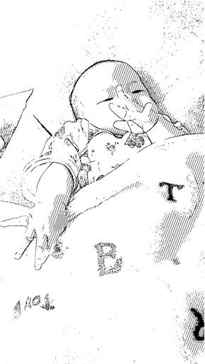 f:id:mamashizue:20170202035152j:image