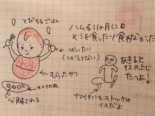 f:id:mamashizue:20171120224426j:image