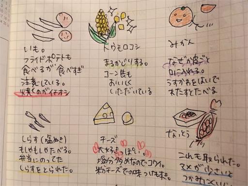 f:id:mamashizue:20171120224649j:image