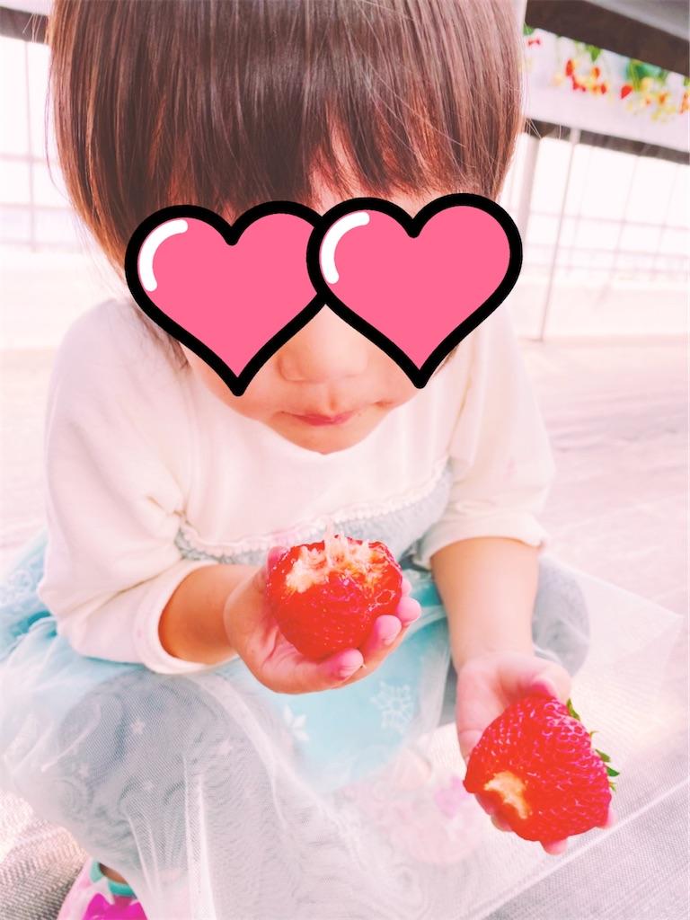f:id:mamashizue:20200205204809j:image