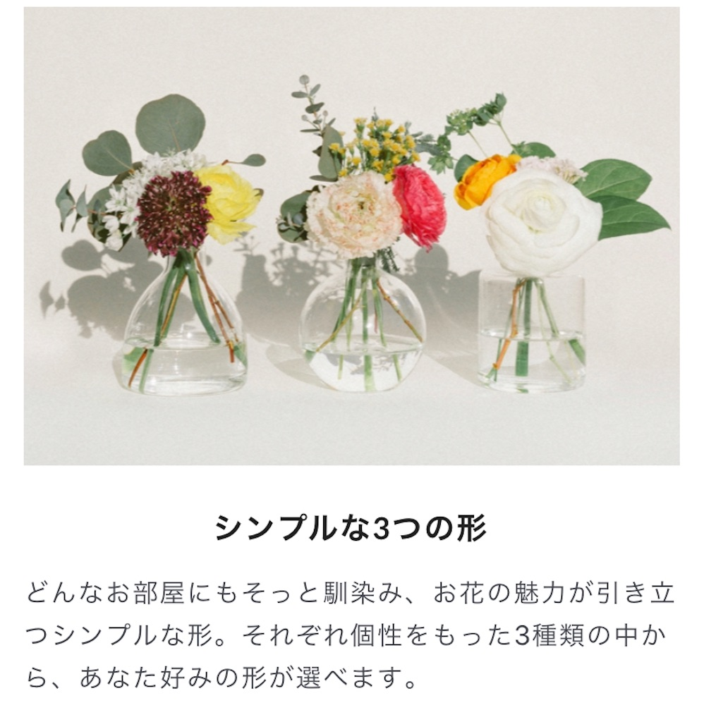 f:id:mamashizue:20200305131659j:image