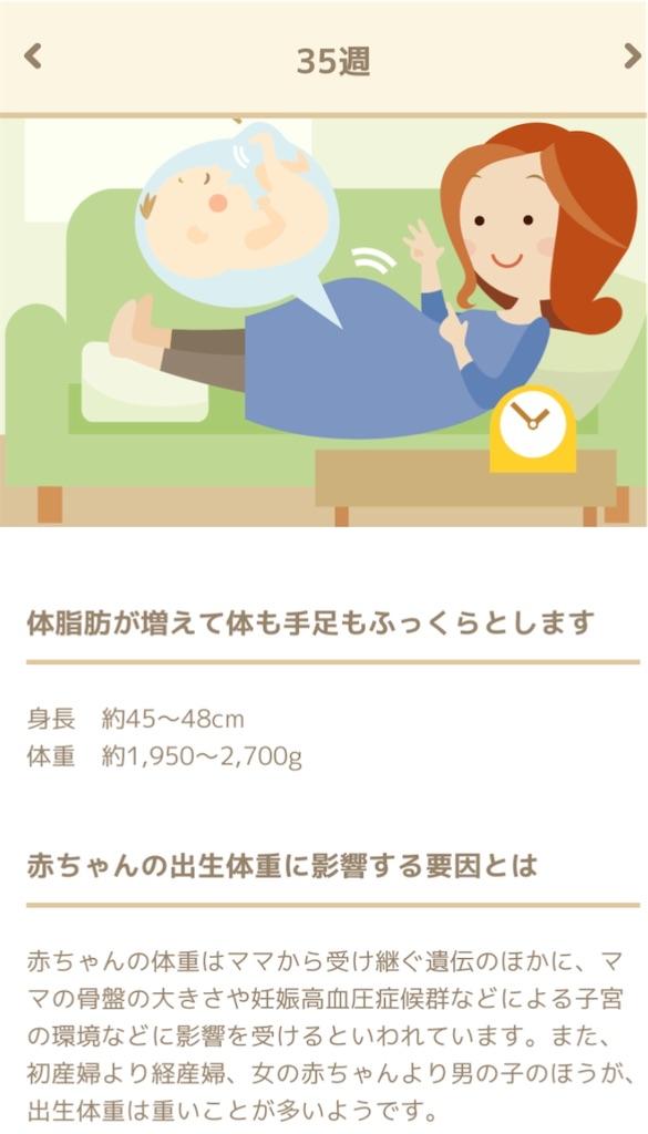 f:id:mamashizue:20200507134142j:image