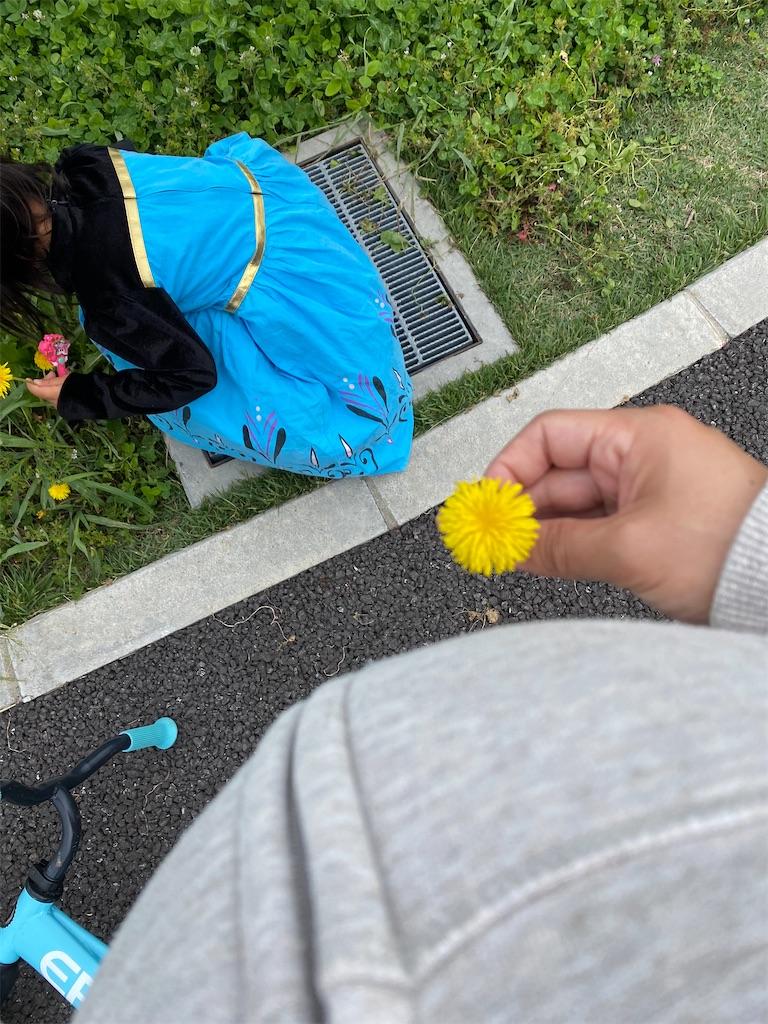 f:id:mamashizue:20200522163056j:image