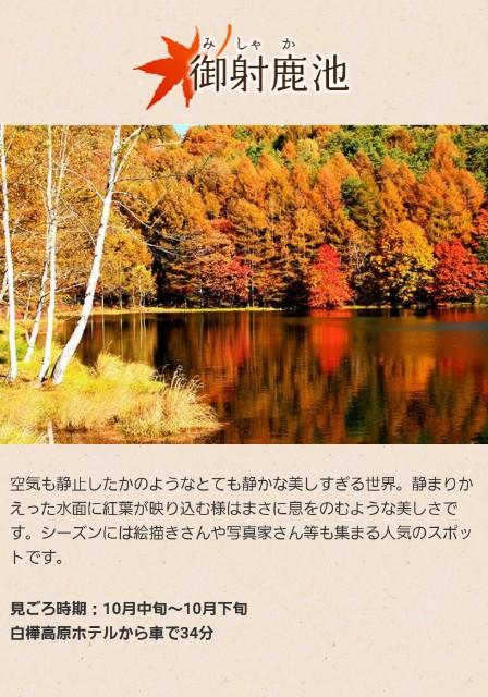 f:id:mame-uni0331:20180925210207j:image