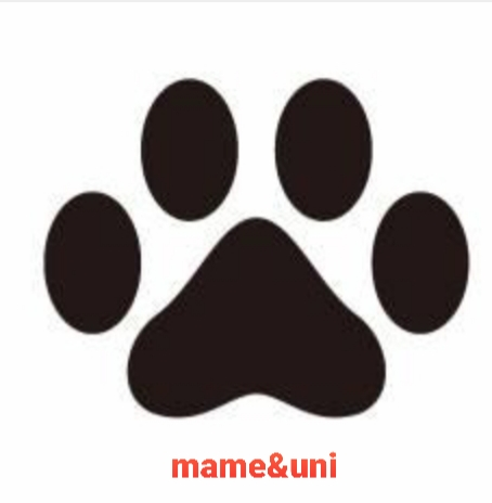 f:id:mame-uni0331:20210222190023j:plain