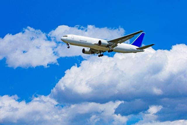 夏休みの飛行機混雑状況、お盆は?赤ちゃん連れは?