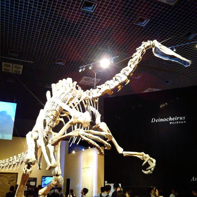 恐竜博2019のみどころ
