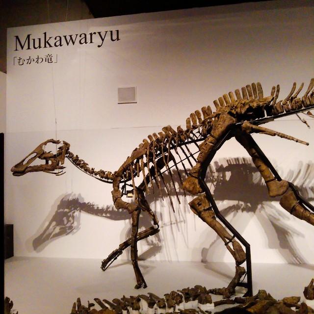 恐竜博2019現地レポ