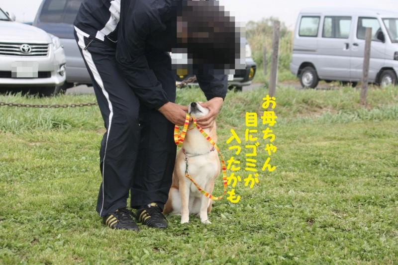 f:id:mamekonbu0410:20120102213906j:image