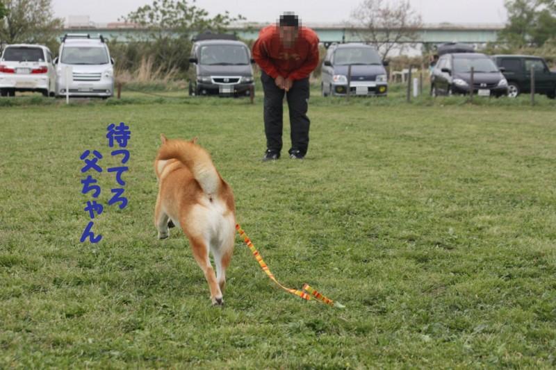 f:id:mamekonbu0410:20120102214303j:image