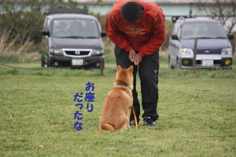 f:id:mamekonbu0410:20120102214556j:image