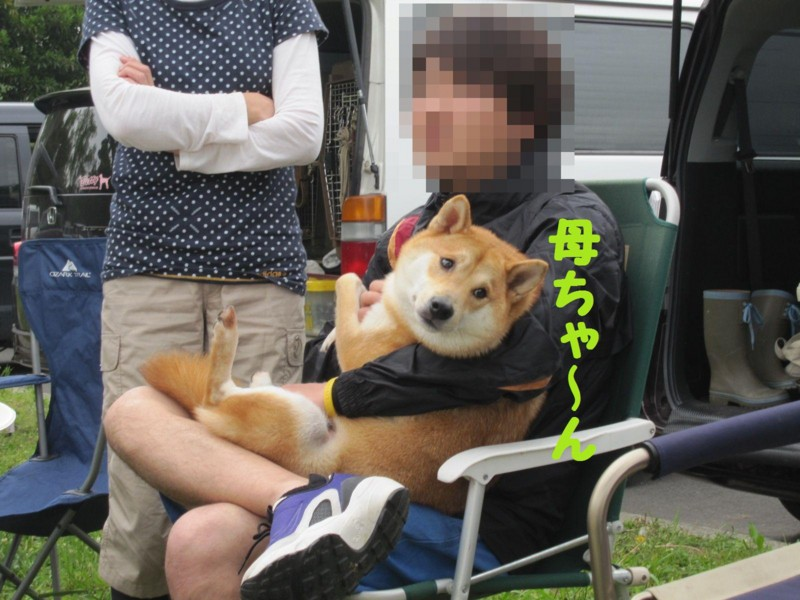 f:id:mamekonbu0410:20120102224628j:image