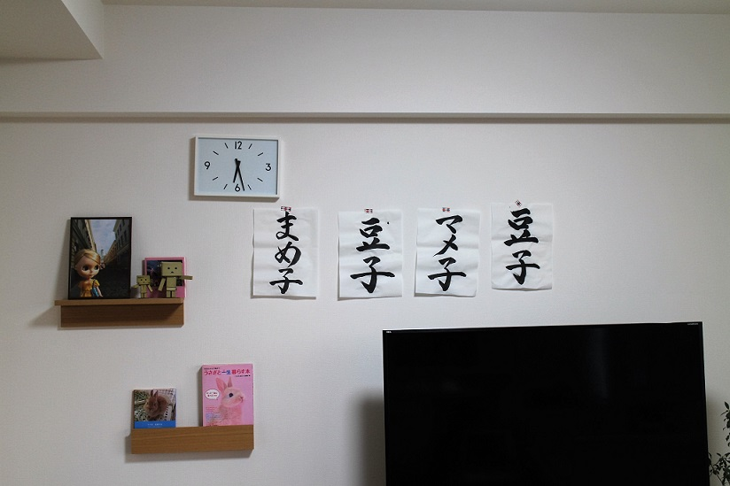 f:id:mamekousagi:20180404184326j:plain