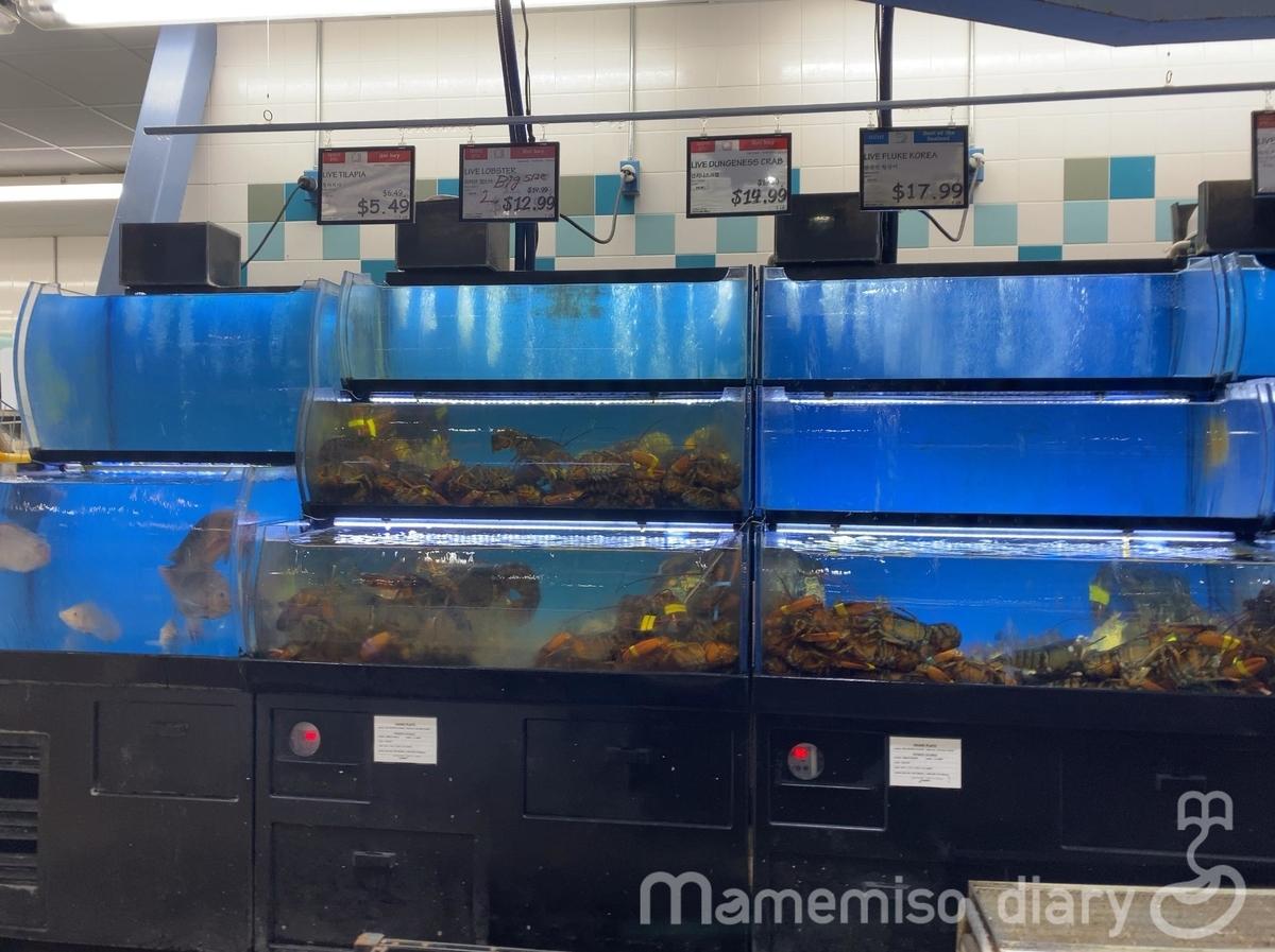 魚売り場の生けすの様子