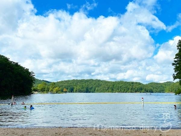 湖畔の写真