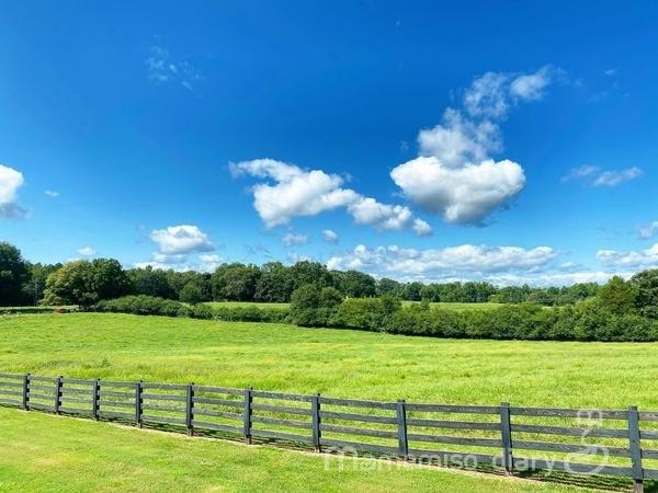 周辺の牧草地