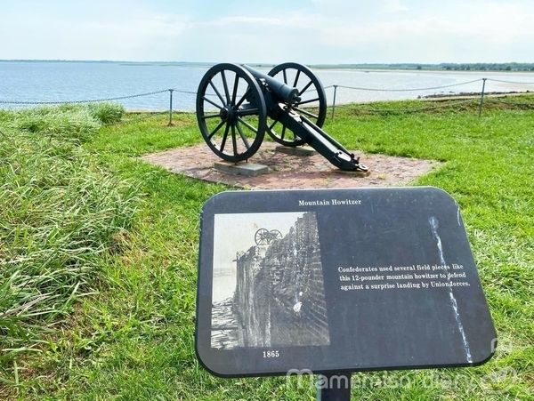沿岸の大砲