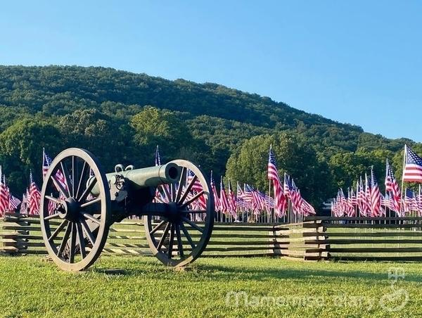 イベントの旗と大砲