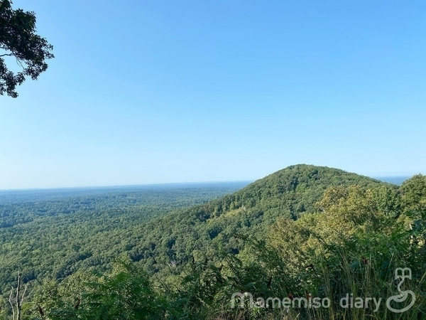 山と森の風景
